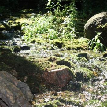 Kaļķugravas (Mežmuižas) avoti