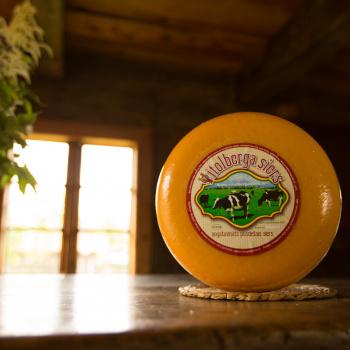 Vītolberga siers